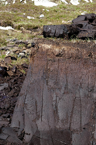 What is Peat?